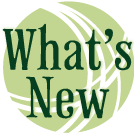 link to new products - an icon for wha is new