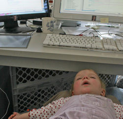 webmaster asleep on the job