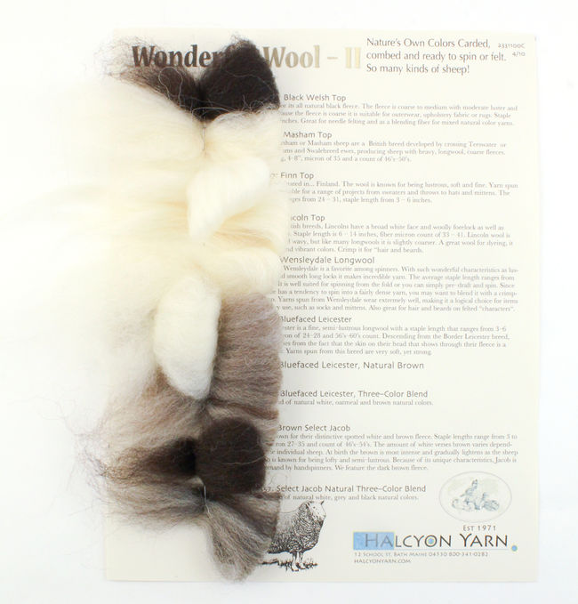 Wonderful Wools  2 - Specialty Breed Wool Roving and Top - Felting and Spinning Fibers - Sample Card