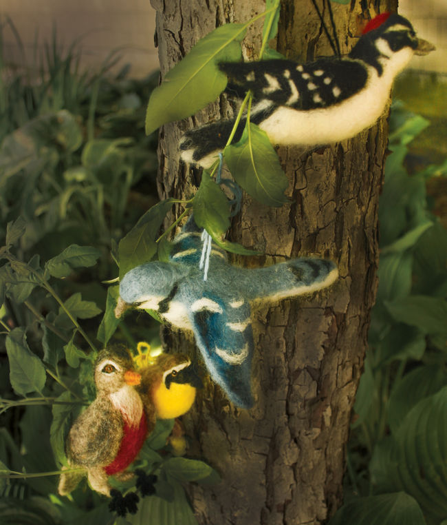 Backyard Birds Too - Black Sheep Designs