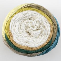 Yarn 21205010  color 0501