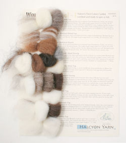 Wonderful Wools 1 - Fibers for Felting and Spinning, Wool Rovings and Tops - Sample Card