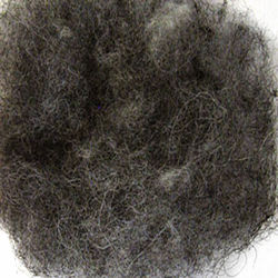 Wool Fiber:  color 4020