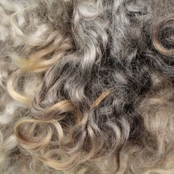 Mohair Fiber:  color 0010