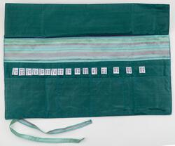 Interchangeable Needle Case  Seafoam
