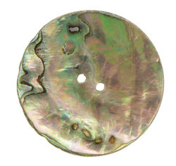 Mexican Abalone 78quot Button