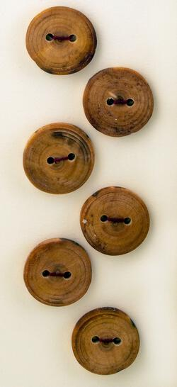 Six Medium Buttons - Conifer/Evergreen