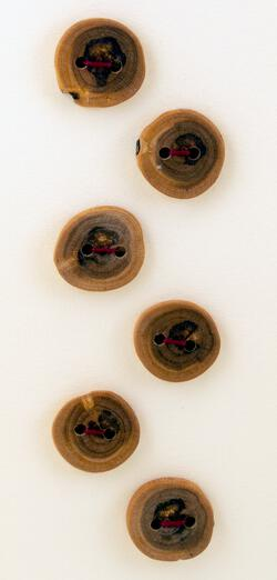 Six Medium Buttons - Mixed Woods