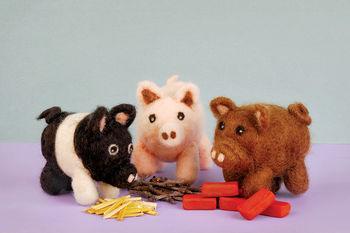 Felting kits Pig Needle Felting Kit- Romney Ridge