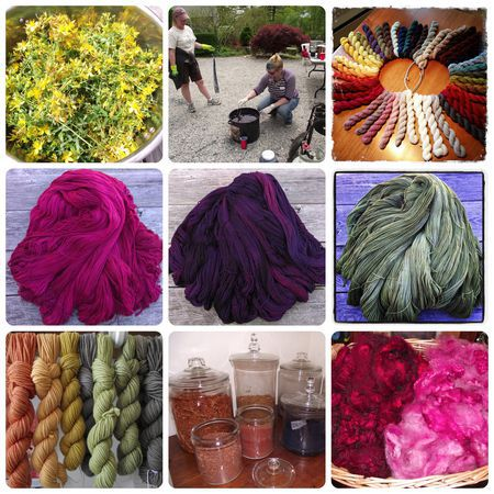 Natural--Dyeing--for--Beginners
