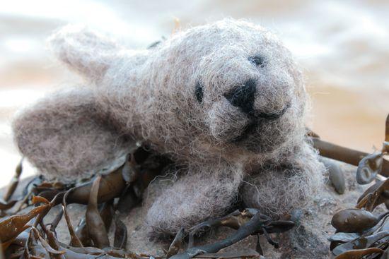 Felting Kits Harbor Seal Single Creature Needle Felting Kit - Romney Ridge