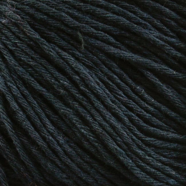 Yarn 21899900  color 9990