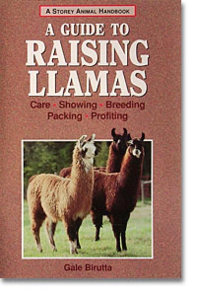 A  Guide to Raising Llamas