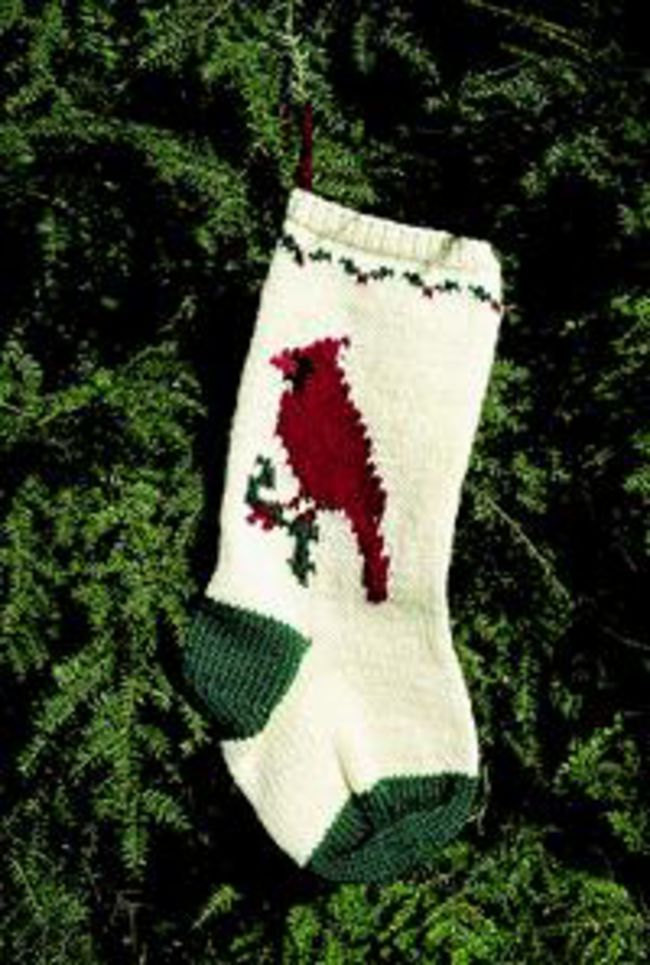 Knit Pattern For Christmas Stocking Kit : Cardinal Christmas Stocking Kit, Knitting Kit - Halcyon Yarn