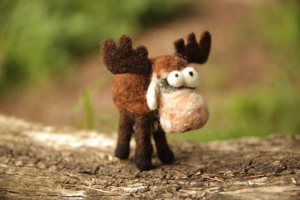 new-woolbuddy-felting-kits