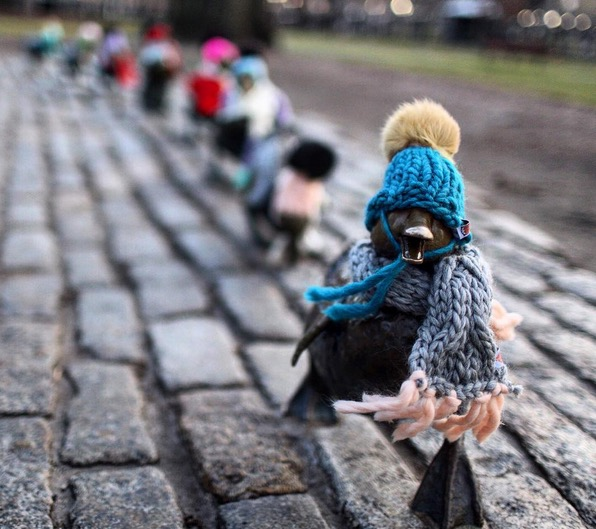 make-way-for-ducklings-knit-hats