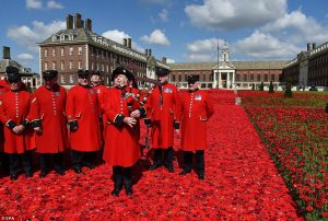 300-000-knitted-poppies-2
